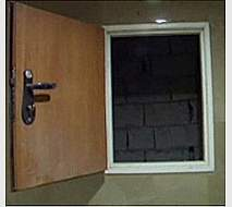Service Shaft door